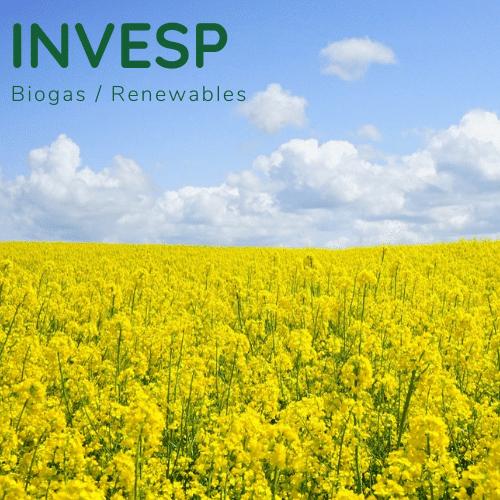 Kernbranche Biogas